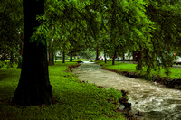 20140605_Campus_Creek_0004-Edit