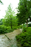 20140605_Campus_Creek_0122